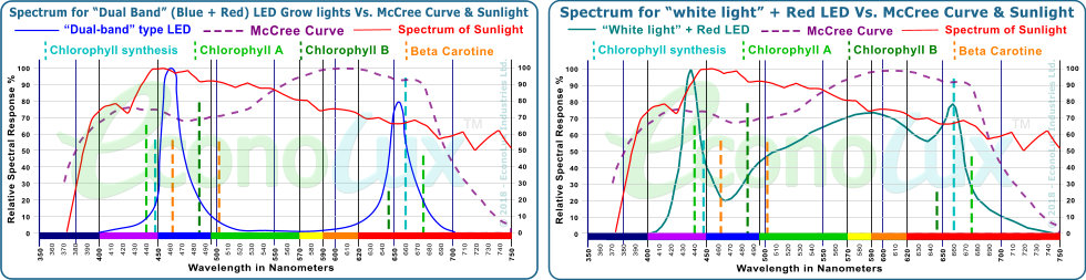 Comparison of the spectrum of typical Blue + Red LED and 'White' + Red LED grow-lights to the McCree Curve & Sunlight