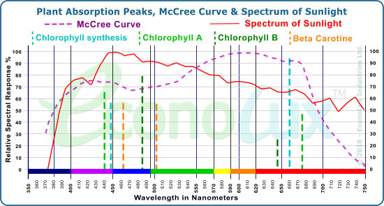 Plant Absorption Peaks, the McCree Curve, nad the spectrum of Sunlight