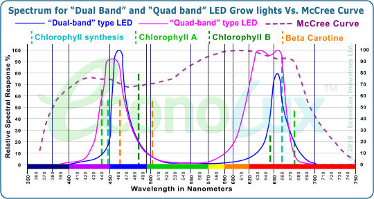 Spectrum for �Dual Band� and �Quad band� LED Grow lights Vs. McCree Curve